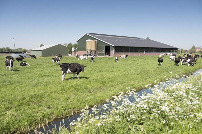 Landwirtschaftlicher Betrieb: Keine Aufgabe bei Verpachtung